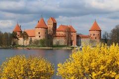 Τρακάι Castle στην άνθιση Στοκ Εικόνα