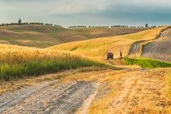 Τρακτέρ με ένα ρυμουλκό στους τομείς στην Τοσκάνη, Ιταλία Στοκ Εικόνες