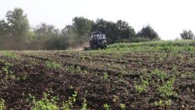 Τρακτέρ που οργώνει το μαύρο τομέα γήινων αρότρων στο πρωί που εισβάλλεται με τα ζιζάνια φιλμ μικρού μήκους