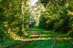 Τραμ και ράγες τραμ στο ζωηρόχρωμο δάσος Στοκ Φωτογραφία