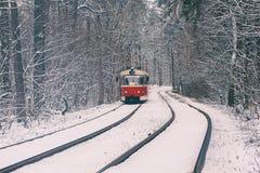 Τραμ στο δάσος Στοκ Φωτογραφία