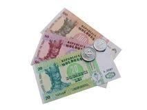 Τραπεζογραμμάτια και νομίσματα της Μολδαβίας στοκ εικόνα με δικαίωμα ελεύθερης χρήσης