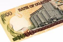 Τραπεζογραμμάτιο νομίσματος της Αφρικής Στοκ Φωτογραφία