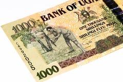 Τραπεζογραμμάτιο νομίσματος της Αφρικής Στοκ Εικόνες
