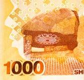 Τραπεζογραμμάτιο νομίσματος της Αφρικής Στοκ Φωτογραφίες