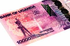 Τραπεζογραμμάτιο νομίσματος της Αφρικής Στοκ φωτογραφίες με δικαίωμα ελεύθερης χρήσης