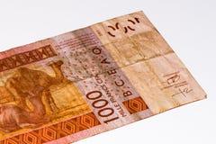 Τραπεζογραμμάτιο νομίσματος της Αφρικής Στοκ Εικόνα