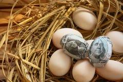 Τραπεζογραμμάτιο δολαρίων στα αυγά φωλιών, ανάπτυξη της επιχείρησης και της επιχείρησης γένεσης, νέα επιχείρηση που αρχίζουν από  Στοκ εικόνα με δικαίωμα ελεύθερης χρήσης