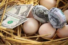 Τραπεζογραμμάτιο δολαρίων στα αυγά φωλιών, ανάπτυξη της επιχείρησης και της επιχείρησης γένεσης, νέα επιχείρηση που αρχίζουν από  Στοκ φωτογραφίες με δικαίωμα ελεύθερης χρήσης