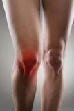 τραυματισμών τρέχοντας αθλητισμός δρομέων πόνου γονάτων ανδρικός Στοκ εικόνες με δικαίωμα ελεύθερης χρήσης