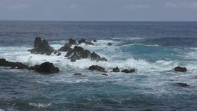 Τραχιά άποψη της Χαβάης ακτών φιλμ μικρού μήκους