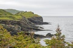Τραχιά ακτή στη νέα γη Στοκ Φωτογραφίες