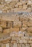 Τραχιά σύσταση ενός τούβλου πετρών Στοκ φωτογραφία με δικαίωμα ελεύθερης χρήσης