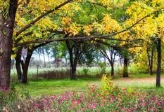 Τραχύς αγροτικός κήπος φθινοπώρου Στοκ Φωτογραφίες