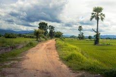 Τραχύς δρόμος σε αστικό, επαρχία στοκ εικόνες