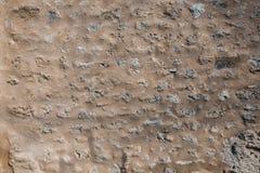 Τραχύς πέτρινος τοίχος στόκων της ισπανικής αποστολής Στοκ Εικόνα