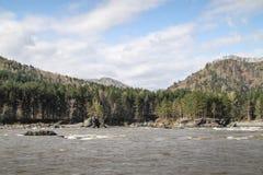 Τραχύς ποταμός Katun βουνών στην περιοχή Altai στοκ φωτογραφίες