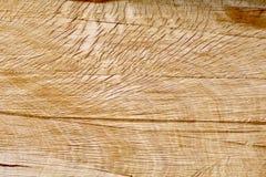 Τραχύ κοκκιώδες διασπασμένο δρύινο κούτσουρο Στοκ Εικόνες