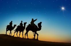 Τρεις βασιλιάδες που εξετάζουν το αστέρι Στοκ φωτογραφίες με δικαίωμα ελεύθερης χρήσης