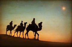 Τρεις βασιλιάδες που εξετάζουν το αστέρι Στοκ Εικόνες