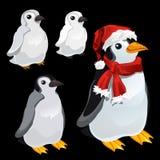 Τρεις εικόνες ενός penguin και ενός penguin Santa απεικόνιση αποθεμάτων