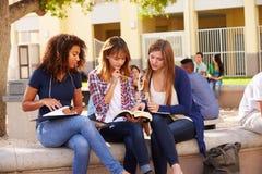 Τρεις θηλυκοί σπουδαστές γυμνασίου που εργάζονται στην πανεπιστημιούπολη στοκ εικόνες