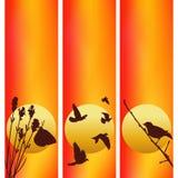 Τρεις διανυσματικές απεικονίσεις ηλιοβασιλέματος Στοκ φωτογραφίες με δικαίωμα ελεύθερης χρήσης
