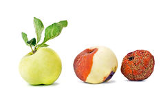 Τρεις καταστάσεις του μήλου Στοκ φωτογραφίες με δικαίωμα ελεύθερης χρήσης