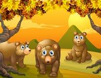 Τρεις καφετιές αρκούδες απεικόνιση αποθεμάτων