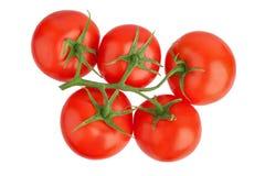 Τρεις κόκκινες ώριμες ντομάτες με τα πράσινα φύλλα σε έναν κλάδο στο άσπρο υπόβαθρο απομόνωσαν κοντά επάνω, όμορφη κόκκινη δέσμη  στοκ εικόνα