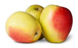 Τρεις κόκκινη και κίτρινη Apple Στοκ Εικόνες