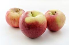 Τρεις κόκκινη Apple Στοκ Εικόνα