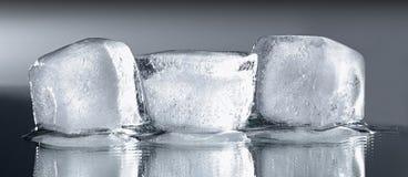 Τρεις κύβοι πάγου με την αντανάκλαση Στοκ Εικόνες