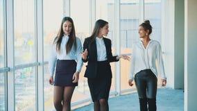 Τρεις νέες όμορφες επιχειρησιακές κυρίες brunette στο γραφείο φιλμ μικρού μήκους