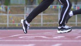 Τρεις νεαροί άνδρες αρχίζουν να τρέχουν από μια χαμηλή έναρξη treadmill στους δρομείς σταδίων σε έναν χαμηλό υγιή τρόπο ζωής έναρ απόθεμα βίντεο