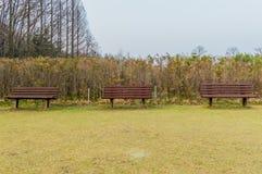 Τρεις ξύλινοι πάγκοι Στοκ Φωτογραφία