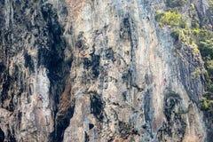 Τρεις ορειβάτες βράχου στον απότομο βράχο Railay, Krabi Ταϊλάνδη Στοκ εικόνα με δικαίωμα ελεύθερης χρήσης