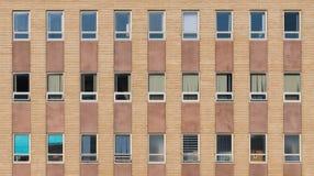 Τρεις σειρές στα παράθυρα ενάντια στο τουβλότοιχο στοκ φωτογραφίες
