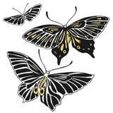 Τρεις συρμένες χέρι διανυσματικές πεταλούδες Στοκ Φωτογραφία