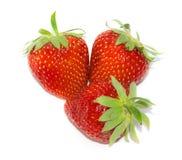 Τρεις φράουλες Στοκ φωτογραφία με δικαίωμα ελεύθερης χρήσης