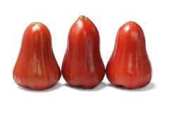 Τρεις φρέσκος υδατώδης αυξήθηκε μήλα Στοκ Εικόνα