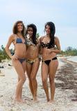 Τρεις όμορφες γυναίκες στα μπικίνια στοκ εικόνες