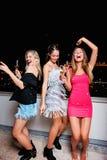 Τρεις όμορφες, εύθυμες γυναίκες που έχουν μια νύχτα κοριτσιών έξω, έχοντας τη διασκέδαση Στοκ φωτογραφία με δικαίωμα ελεύθερης χρήσης