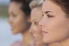 Τρεις όμορφες νέες γυναίκες στο σχεδιάγραμμα Στοκ φωτογραφία με δικαίωμα ελεύθερης χρήσης