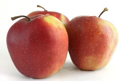 Τρεις Apple που απομονώνεται στο άσπρο υπόβαθρο με τις πτώσεις της δροσιάς Στοκ εικόνα με δικαίωμα ελεύθερης χρήσης
