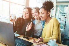 Τρεις gourgeous καλύτεροι φίλοι είναι στον καφέ Κάθονται vlose σε ένα lap-top που είναι στον πίνακα και Στοκ Εικόνες