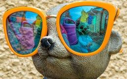 Τρελλό Meerkats στα αντανακλημένα γυαλιά στοκ φωτογραφία