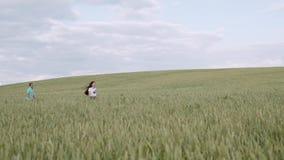 Τρεξίματα αγάπης ζευγών κατά μήκος του τομέα σίτου Ένα κορίτσι που φλερτάρει με έναν τύπο τρέχει μακρυά από τον φιλμ μικρού μήκους