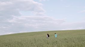 Τρεξίματα ευτυχή κοριτσιών μακρυά από το φίλο της καυτός θερινός σίτος πεδίων ημέρας απόθεμα βίντεο