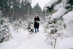 Τρεξίματα κοριτσιών με το γεροδεμένο σκυλί στο χιονώδες δάσος στοκ φωτογραφίες